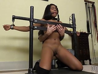 Ebony Tortured