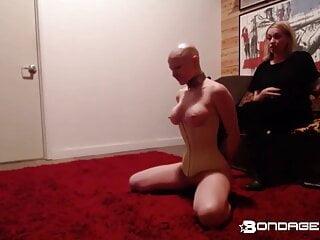 Slave slut greyhound
